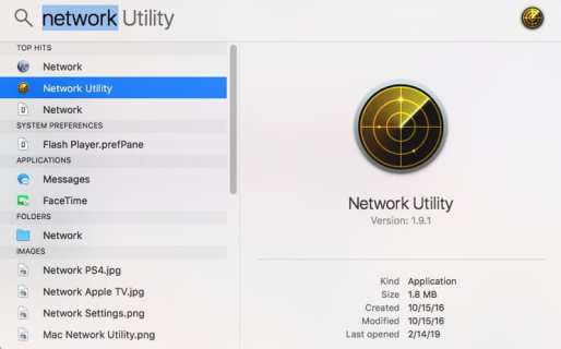Network Utility Ping