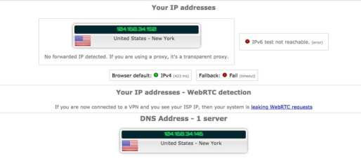 DNS Leak Wsscribe